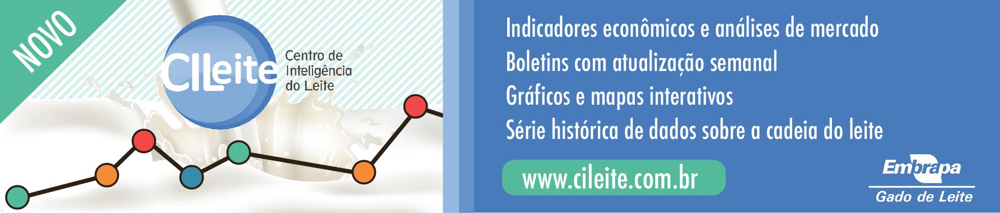 Cileite